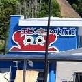 エビとカニの水族館イメージ小