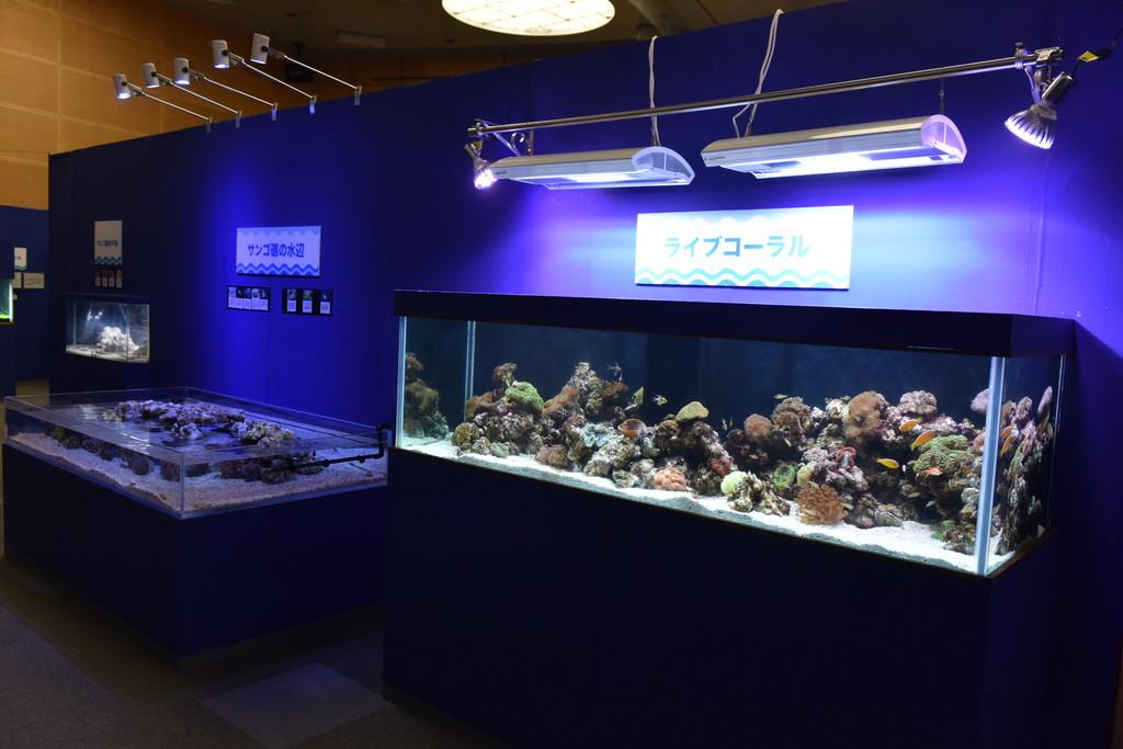 移動水族館イメージ